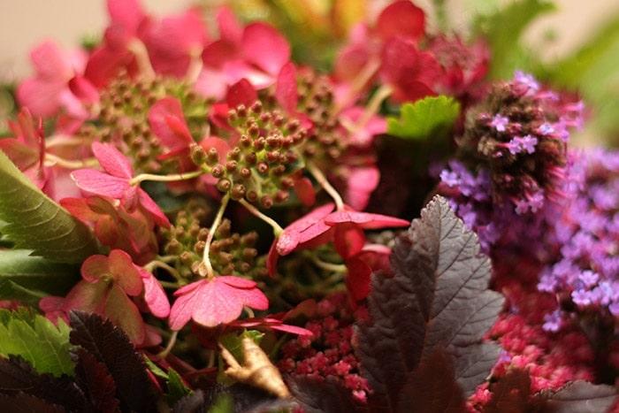 Herbstdekoration - Hortensien