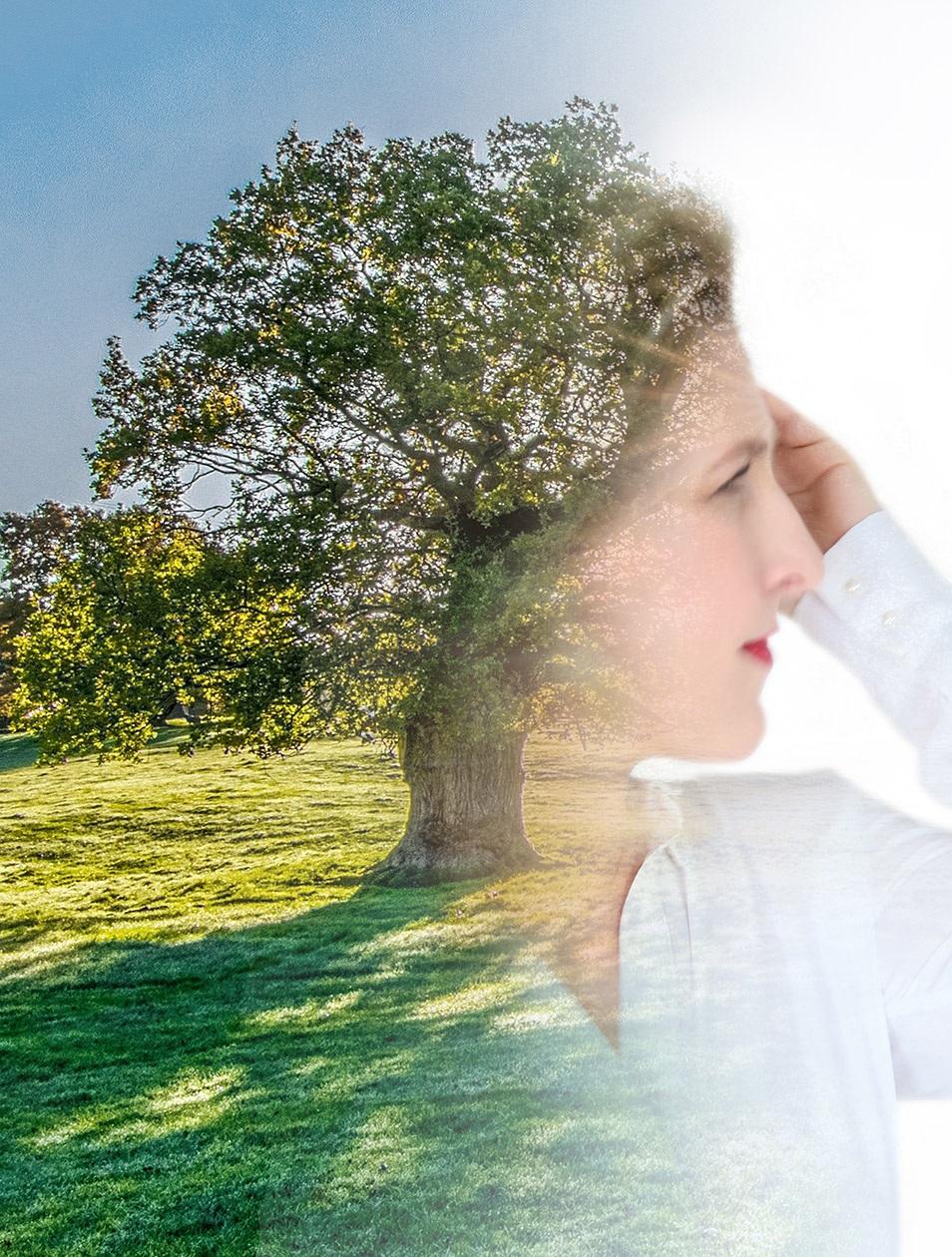 Nachhaltigkeit Klimaschutz Wald Relana Dombetzki ALDO Magazin