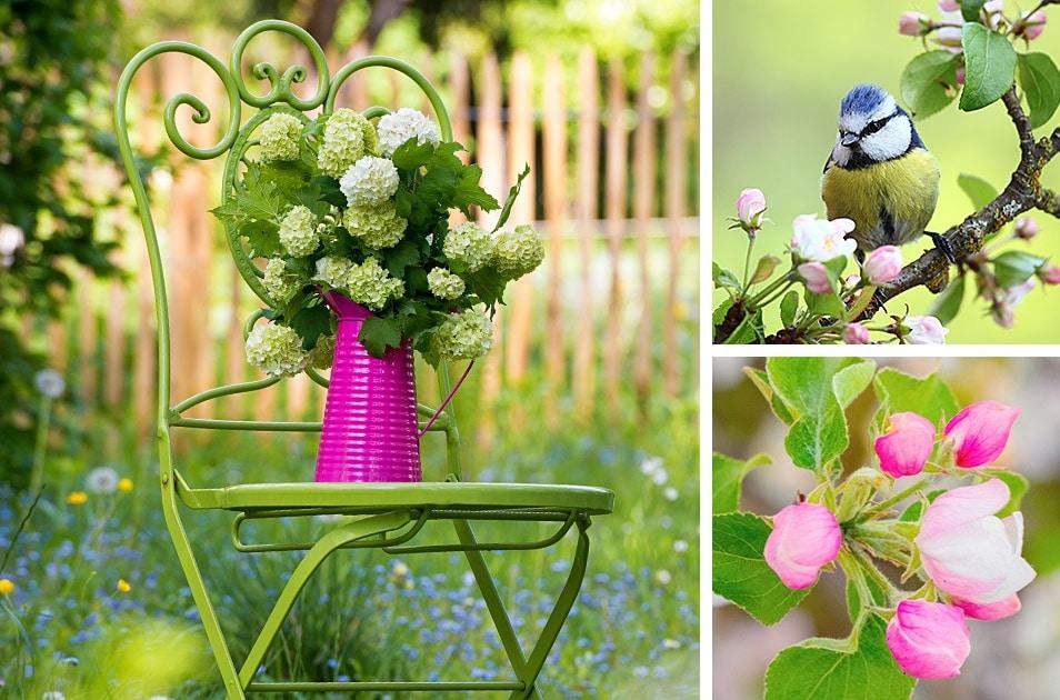 Fruehling Garten Lammkarree Rezept Relana Dombetzki ALDO Magazin